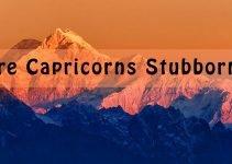 Are Capricorns Stubborn